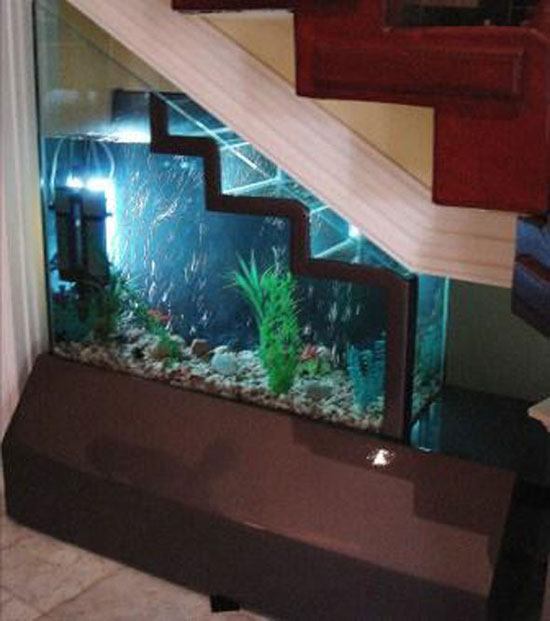 aquarium under the Stairs is the best solution home decor