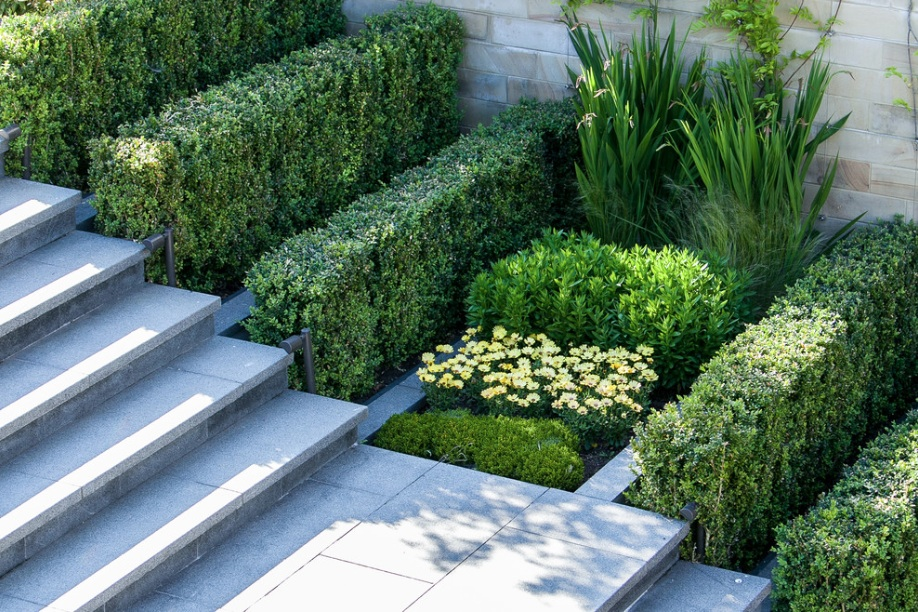How to Add Modern Elements to Your Landscape Design ... on Contemporary Backyard  id=13021