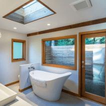 artistic bathtub concept