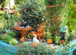 Unique Fairy Garden Ideas 1