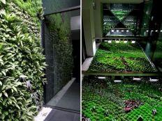 Design Indoor Vertical Garden