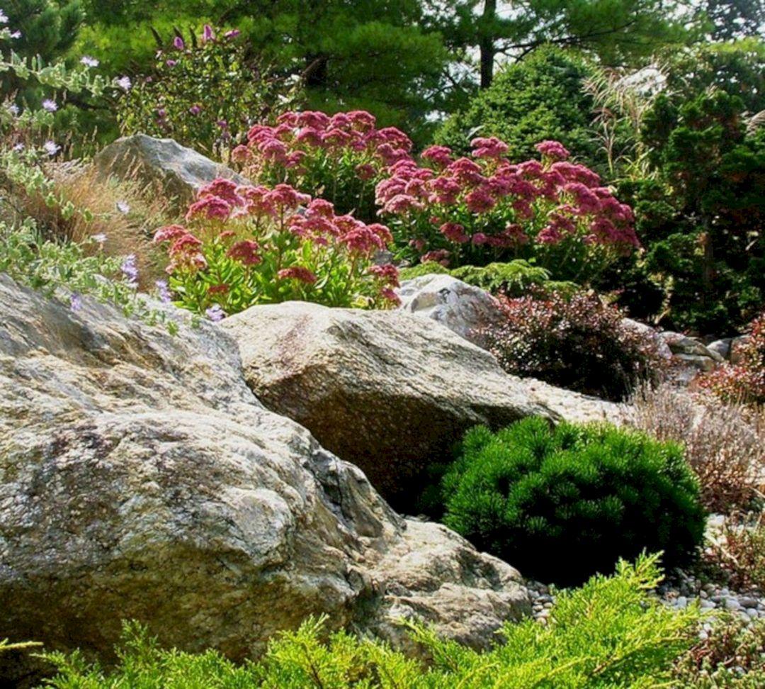 55+ The Rock Garden Design Ideas For Exciting Garden ... on Backyard Rocks  id=13664
