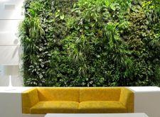 Ideas Indoor Vertical Wall Garden