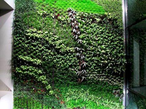 Indoor Green Wall Vertical Garden