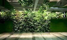Indoor Vertical Garden Designs