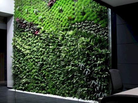 Indoor Vertical Garden Idea