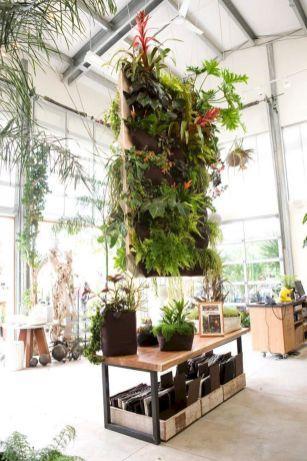 Indoor Vertical Garden Ideas