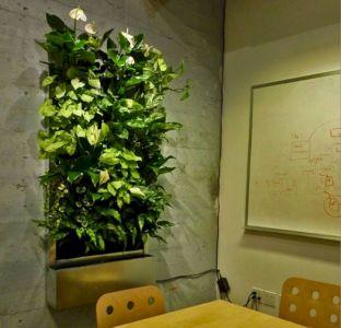 Indoor Vertical Wall Garden Systems