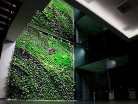 Indoors Vertical Garden