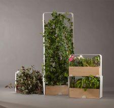 Vertical Indoor Garden Plants