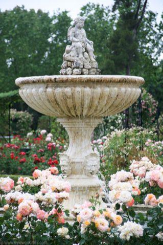 Rose Garden With Fountain