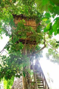 Tree Houses Village Dominican Republic