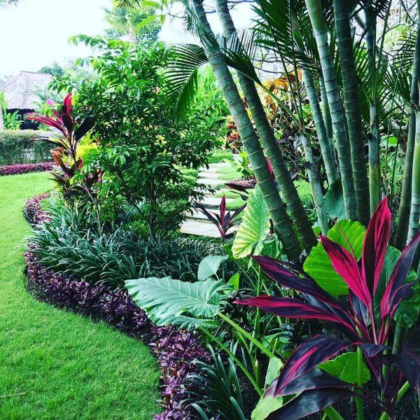 tropical garden design 35+ Beautiful Tropical Front Yard Landscape Ideas To Make