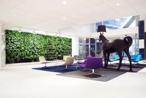 Eco Friendly Green Home Interior