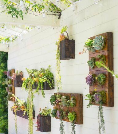 Small Succulent Container Garden Ideas 4