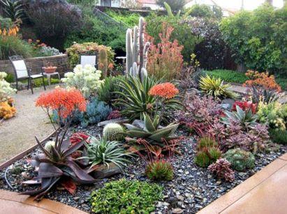 Small Succulent Container Garden Ideas 6