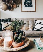 Cactus Home Decor Ideas 26