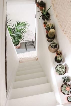 Cactus Home Decor Ideas 29