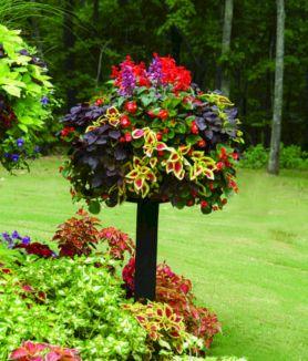 Container Spring Garden