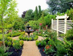 Beautiful Dream Garden