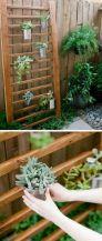 Outdoor Succulent Garden Idea