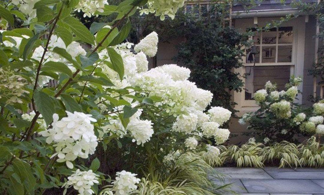 awesome white garden ideas