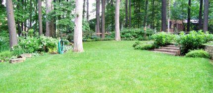 Woodland Garden Landscape Design