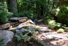 Woodland Garden Landscape Designs