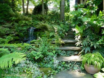 Woodland Garden Landscape Idea