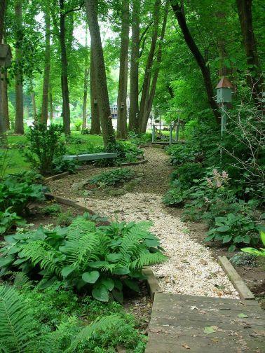 Woodland Garden Landscape Ideas
