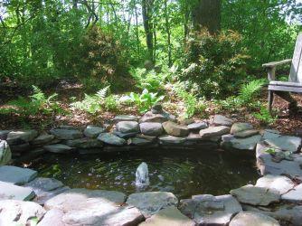 Woodland Shade Garden Design