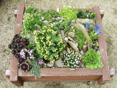 Gorgeous Rock Garden Ideas 15