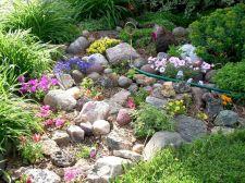 Gorgeous Rock Garden Ideas 17