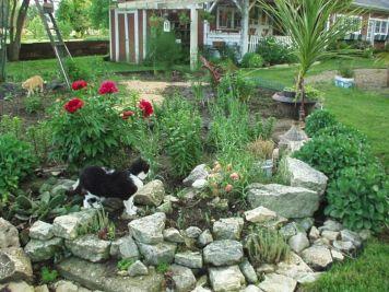 Gorgeous Rock Garden Ideas 24