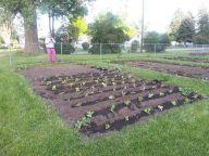 Community Garden Ideas For Inspiration 16