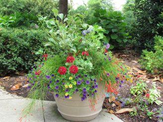 Container Gardening Ideas 2