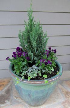 Container Gardening Ideas 24
