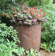 Container Gardening Ideas 25