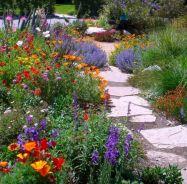 Orange Garden Color Inspiration 17