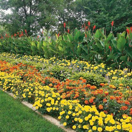 Orange Garden Color Inspiration 3