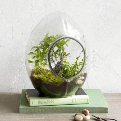 DIY Succulent Terrarium Ideas 15