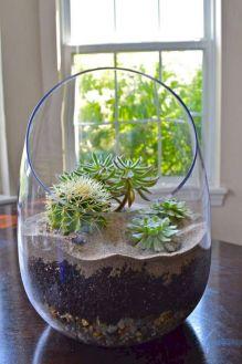 DIY Succulent Terrarium Ideas 2