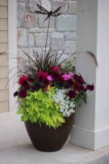 Summer Planter Ideas 14