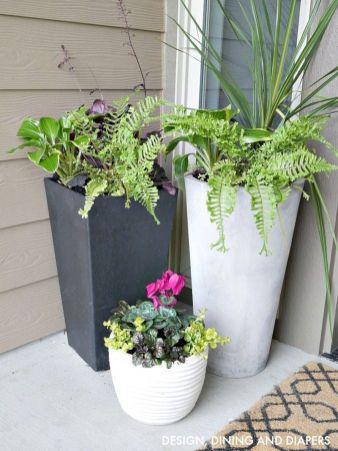 Summer Planter Ideas 7