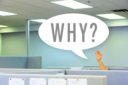 Compan Ask Why Day, Ask Questions Raise Hand