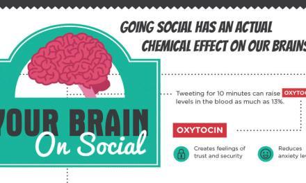Your Brain on Social