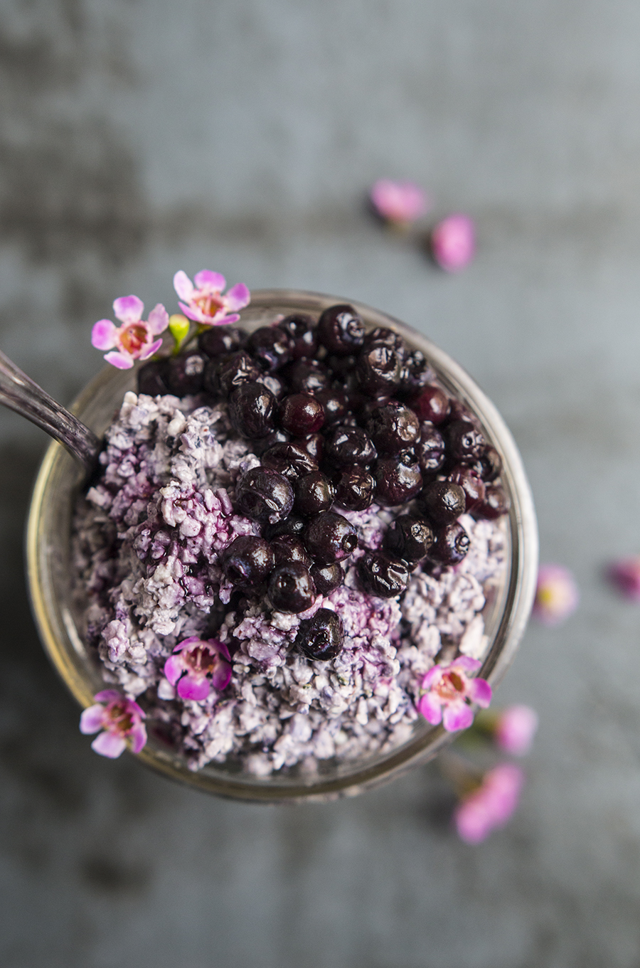 Wild Blueberry Coconut Chia Overnight N'Oatmeal