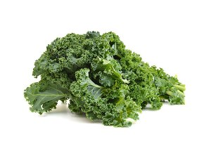 KALE-FRESH-PRODUC-GROUP-LLC1.jpg