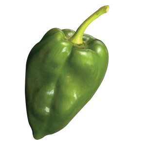 POBLANO-FRESH-PRODUCE-GROUP-LLC.jpg