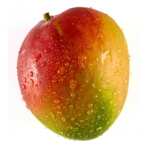 KENT-MANGO-FRESH-PRODUCE-GROUP-LLC.jpg